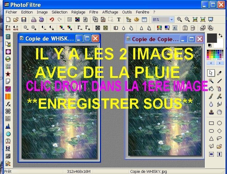 EXPLICATIONS PHOTOFILTRE. PLUIE QUI TOMBE